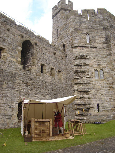 Wattle and Daub at Caernarfon Castle